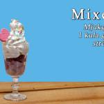 mixen_500