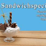 sandwichspecial_500